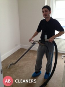 Expert Carpet Cleaner During Session
